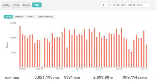fitbit_year